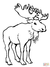 coloring pages deer finest coloring books coloring pages deer