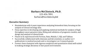 Resume Synopsis Sample by Fashionable Inspiration Resume Summary Samples 12 The Most
