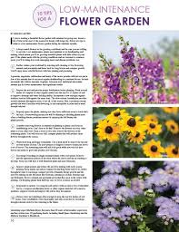 Low Maintenance Plants And Flowers - 10 tips for a low maintenance flower garden women u0027s lifestyle