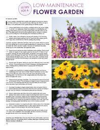 10 tips for a low maintenance flower garden women u0027s lifestyle