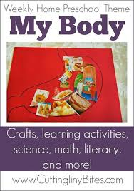best 25 preschool body theme ideas on pinterest body parts