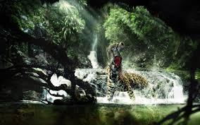 wild animals hd wallpapers wallpapersafari