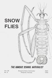 bug eric fly day friday snow flies
