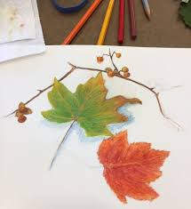 prismacolor watercolor pencils kjf design autumn leaves with watercolor pencil