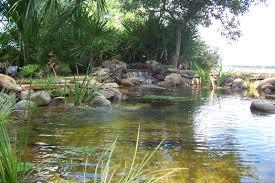 garden ponds archives island garden features