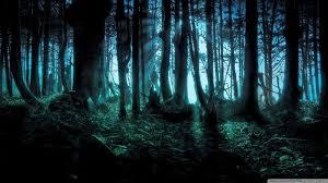 Forêt Ténébreuse