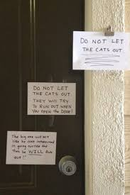 Sneaky Cat Meme - sneaky sneaky cat lolcats lol cat memes funny cats funny