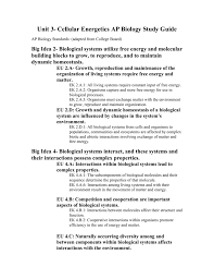 unit 3 cellular energetics ap biology study guide