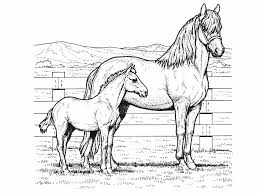 best coloring pages horses print contemporary printable coloring