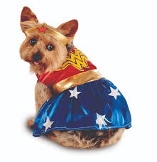best costumes for dogs top pet costume ideas money