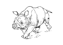 printable rhinoceros running coloring page kids coloring pages