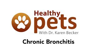 Awn Logo Dr Becker Talks About Chronic Bronchitis Youtube