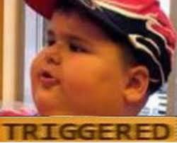 Meme Mcdonald - mcdonald fat boy triggered memes imgflip