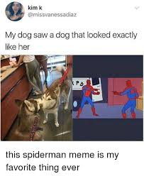 Spiderman Meme - 25 best memes about spiderman meme spiderman memes