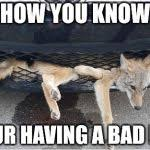 Bad Day Meme - having a bad day meme generator imgflip