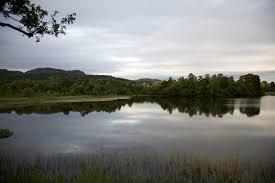 loch of the lowes scottish wildlife trust