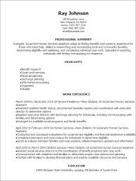 Example Of A Military Resume Best Research Paper Proofreading Services For Mba Resume Education
