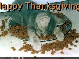 funny happy thanksgiving pic michael savage talks with family less woman who spends holidays