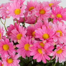 Home Decorations Wholesale by 4 Bushes 88 Silk Daisy Flowers Wedding Party Home Decorations