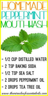 5 Natural Diy Recipes For by Keep Your Breath Fresh With 5 Natural Homemade Mouthwash Recipes