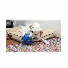 Kong Dog Beds Kong Rambler Ball Dog Toy Petology Com Au