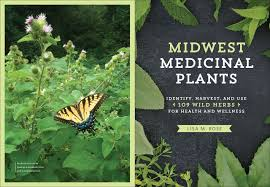 native american plants used for healing midwest medicinal plants identify harvest and use 109 wild