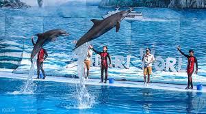 up to 60 off safari world bangkok tickets klook