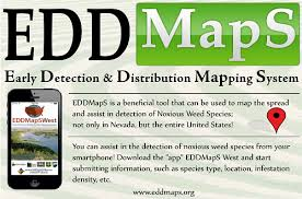 edd maps mapping overview pg