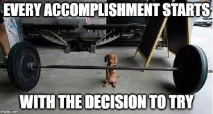 Inspirational Funny Memes - image tagged in memes funny animals funny dogs inspirational quote