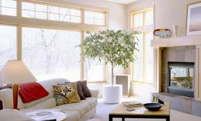 lucky interior design ideas and feng shui tips for the monkey year