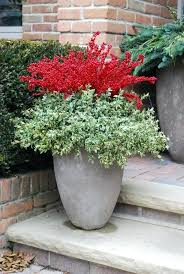 Winter Container Garden Ideas Winter Garden Ideas Uk Home Design Inspirations