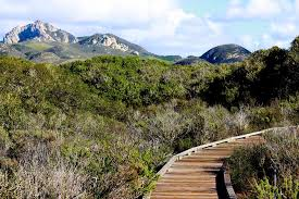 explore central california take a road trip to small towns and