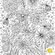 free coloring page for coloring day u2014 jack u0026 jillo