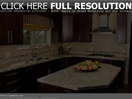 Mobile Home Kitchen Remodeling Ideas by Kitchen Remodels Modern Kitchen Remodel Grey Rectangle Modern