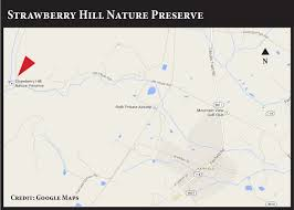 Michaux State Forest Map by Locator Maps Strawberry Hill Jpg