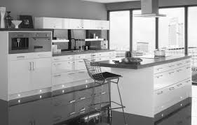 kitchen cabinets san jose ca cabinet shocking european kitchen cabinet legs winsome eurostyle