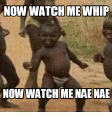 Nae Nae Meme - now watch me whip now watch me nae nae nae nae meme on me me