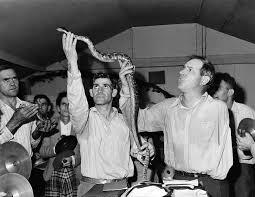 snake handling wikipedia