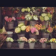 flower shops in 316 best flower ceramics atelier images on workshop