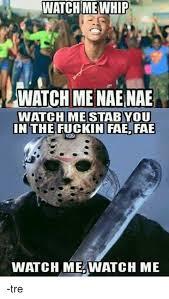 Nae Nae Meme - watch me whip watch me nae nae watch me stab you in the fuckin fae