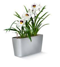 lechuza delta 20 self watering planter metropolitan wholesale