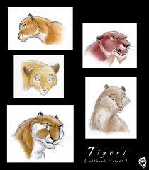 several tiger sketches by dolphydolphiana on deviantart