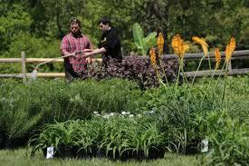 rutgers gardens spring flower fair offers impressive variety new