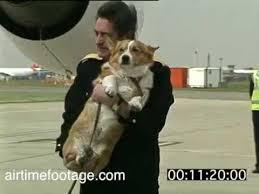 Queen Corgis Queen With Corgis At Heathrow Rushes Youtube