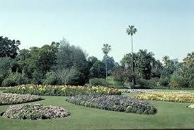 Botanic Gardens Brisbane City City Botanic Gardens Brisbane