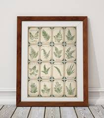 botanical design trends wild apple graphics