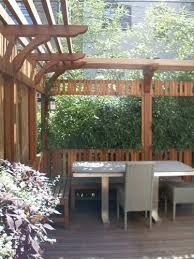 Privacy Backyard Ideas by 138 Best Yard Privacy Fence Plant Etc Ideas Tips Images On