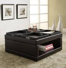 ottoman astonishing coffee table ottoman combo with storage