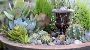 Low Light Succulents by Succulent Fountain Arrangement Triple Urn Challenge November