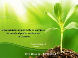 investment project development of agricultural complex for medical p u2026
